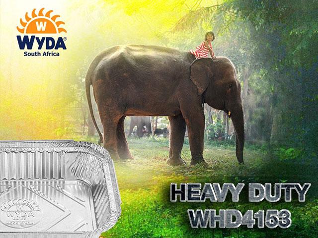 WHD4153_WYDA_SA